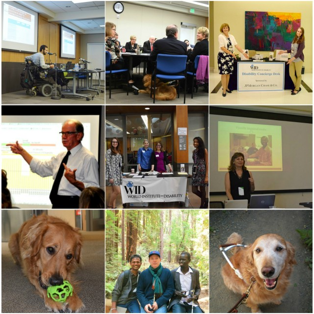 A collage of 9 photos of WID staff, fellows, and service dogs in various places