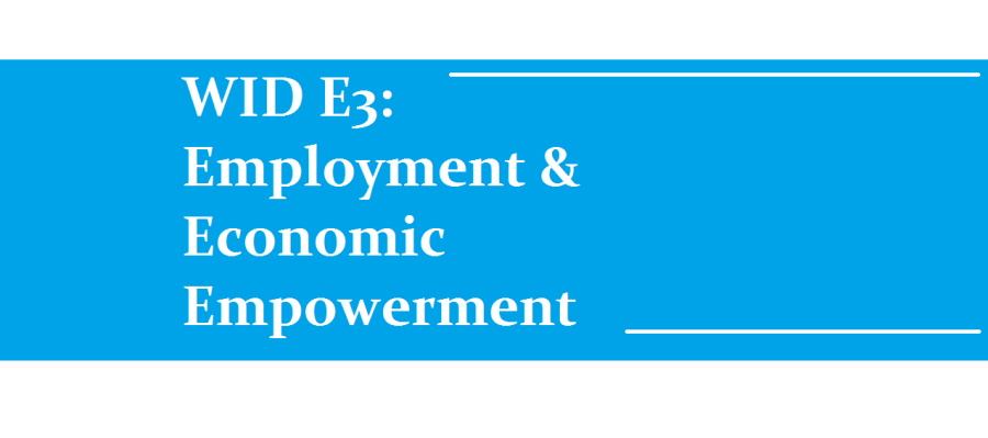 WID E3: Employment & Economic Empowerment banner
