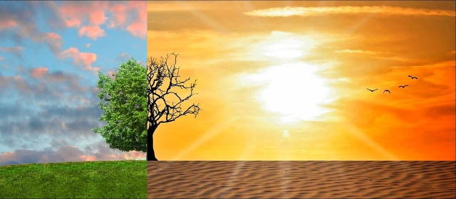A painting of a nature landscape. The left third of the painting shows blue skies with some clouds, green grass and the left half of a tree with many green leaves. A vertical line down the center of the tree splits the landscape, and the right two-thirds shows dead tree branches, a bright orange-and-red sky, a blazing sun, and desert sand instead of green grass. 4 birds fly together near the right border.