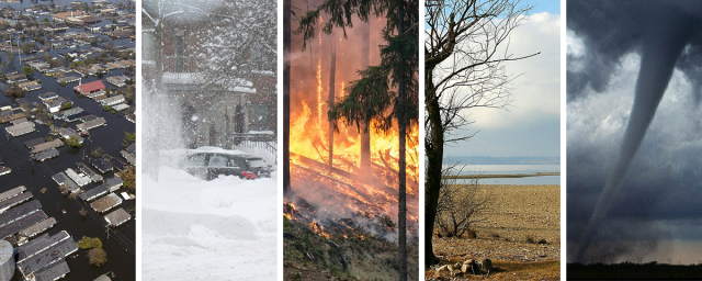 A collage of 5 photos showing a large flooded neighborhood, piles of snow with a car in the background, trees on fire, dry land with a lake in the background, and a tornado.