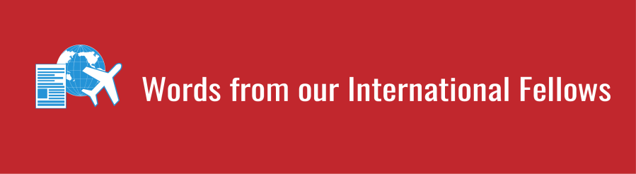 Words from our International fellows banner; graphic of blue world, white paper with blue lines, and white airplane on red background